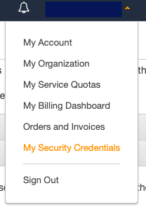 My Security Credentials